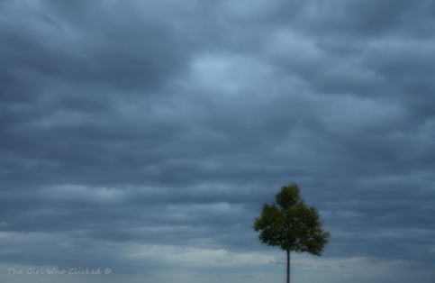 Stormy Clouds - 28 October 2013 019