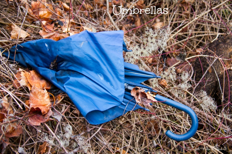 Umbrellas by TGWC Chloe
