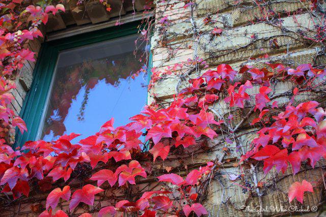 Autumn Window 2