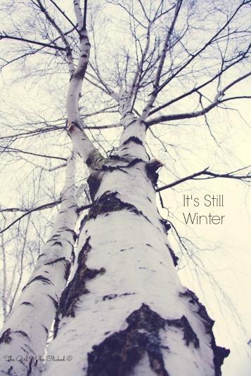 It's Still Winter