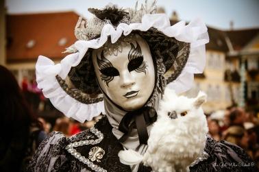 Venetian Festival7