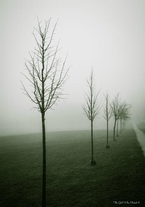 Lovely Mist