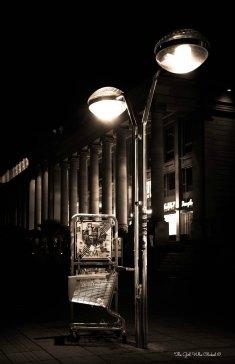 Urban Lights by E. Chloe