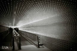 tunnel-lights-by-tgwc-chloe