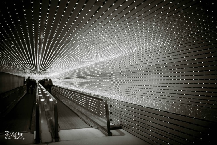 tunnel-lights-by-tgwc-chloe