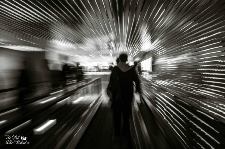 warp-speed-by-tgwc-chloe