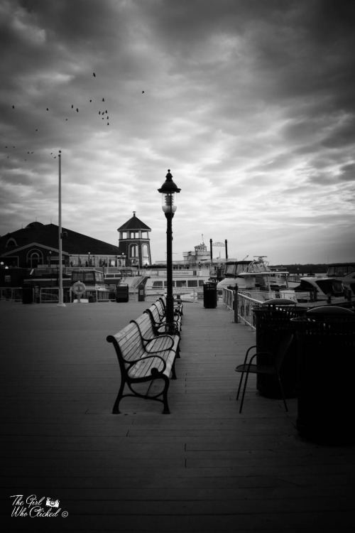on-the-boardwalk-by-tgwc-chloe
