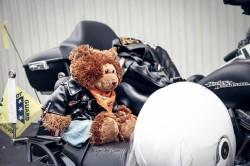 Harley D. Bear by TGWC Chloe