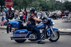 The Blue Rider by TGWC Chloe